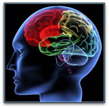 clinical-neuropsychology